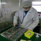 Die neuen Bilder der iPhone 6S-Front wurden offenbar heimlich in einer Fabrik aufgenommen.