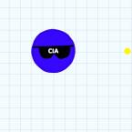Sonnenbrille = CIA