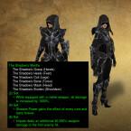 """Dämonenjäger freuen sich auf den neuen Diablo 3-Patch 2.4 und das überholte Set """"Des Schattens Mantelung""""."""