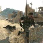 Der Hund kann Gegner erschnüffeln.