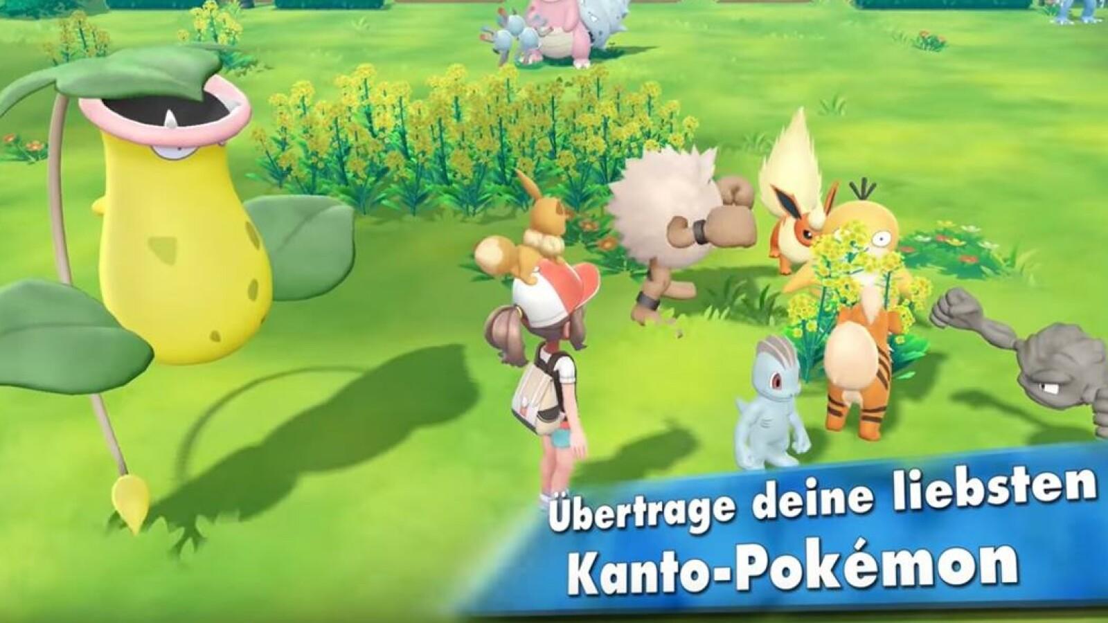 Pokémon Go So übertragt Ihr Wesen In Let S Go Pikachu Evoli