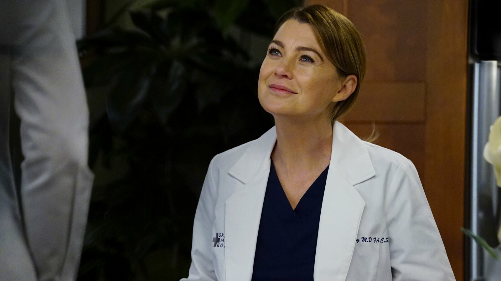 Grey\'s Anatomy: Staffel 15 dreht sich um die Liebe - NETZWELT