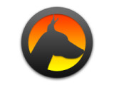 Icon: Watchdog