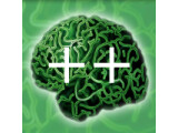 Icon: brain++ Counter Free