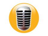 Icon: Voice Call