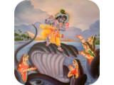Icon: Krishna Chalisa