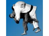 Icon: Judo Throws