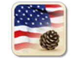 Icon: USA Press News