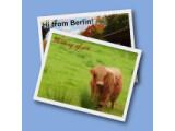 Icon: Postcard Creator