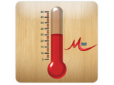 Icon: Thermo (Thermometer)