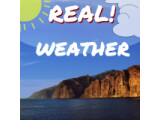 Icon: REAL! Wetter Live Wallpaper