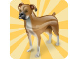 Icon: Hunde Match Game