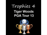 Icon: Trophies 4 Tiger Woods 13