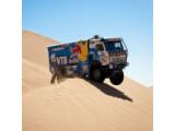 Icon: Rallye Dakar