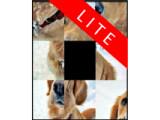 Icon: Schiebpuzzle Hunde