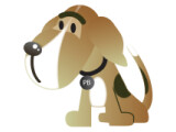 Icon: PhoneBeagle Client