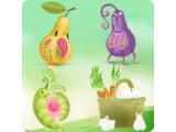 Icon: Fruit Meeting