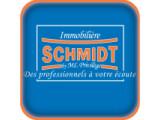 Icon: Schmidt