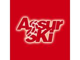 Icon: Assurski
