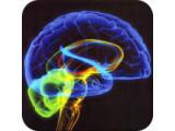 Icon: Mind Mender 3