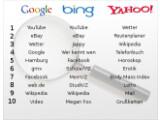 Bild: Suchbegriffe 2009: Das gaben die Deutschen in die Suchfelder der drei bekanntesten Dienste ein.
