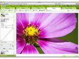 Bild: Picnik - Bearbeiten von Fotos im Web-Browser