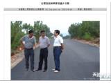 Bild: Chinesische Beamte begutachten den Straßenbau auf - eine Fälschung.