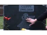 Bild: Eigentlich hatte Microsoft Karl Klammer schon beerdigt, nun kehrt der nervige Office-Helfer von den Toten zurück.
