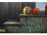Bild: Am Montag ist Halloween stimmen Sie sich schon jetzt mit netzwelt auf das Gruselfest ein.