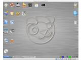 Bild: Puppy Linux ist mit 140 Megabyte eine extrem platzsparende Distribution.