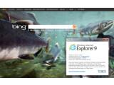 Bild: Das BSI warnt vor massiven Sicherheitslücken im Internet Explorer 6 bis 9.