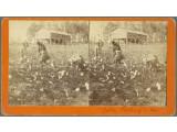 Bild: Historische Stereographien aus dem 19. Jahrhundert können Besucher der Webseite innerhalb weniger Minuten mit einem 3D-Effekt belegen.