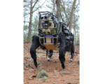 Bild: Das LS3 ist der Nachfolger von Big Dog.