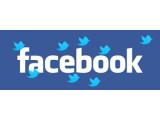 Bild: Twitter macht einige Sachen besser als Facebook. (Bild/Monatge: netzwelt)
