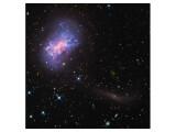 Bild: Die Zwerggalaxie NGC 4449 (oben links) verschlingt die noch kleinere Galaxie (unten rechts).