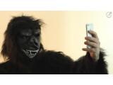 Bild: Nicht ganz das Original, aber der Streit um die Rechte an einem Affen-Selfie sorgt im Netz für Schlagzeilen.