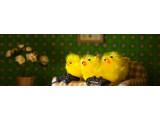 Bild: Die Osterangebote im PlayStation Store laufen vom gehen vom 9. April bis 30. April.