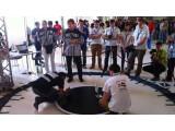 Bild: Die wahrscheinlich größte Aufmerksamkeit der Robot Challenge 2014 erhält das Roboter-Sumo. In drei Gewichtsklassen geht es hier darum, den jeweiligen Konkurrenten von der Platte zu drängen. Die Roboter bewegen sich dabei teilweise blitzschnell. (Bild: