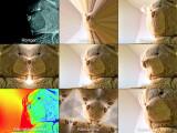 Bild: Webcams und Mikrofone in Smartphone und Tablet könnten im Prinzip unbemerkt filmen und lauschen - rund um die Uhr.