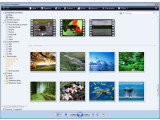 Bild: Magere Tools: Windows-Fotogalerie verwaltet auch Digitalfotos, besonders komfortabel ist das aber nicht.