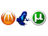 Bild: Können verschlüsselt werden: Azureus, BitComet und µTorrent.