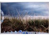 Bild: Echt oder nicht: Screenshot von Windows 7 in einem der Foren.