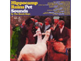 Bild: Hippocamp Ruins Pet Sounds