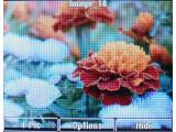 Bild: JPEG- und BMP-Bilder zeigt der Player an. Sie lassen sich in drei Stufen zoomen, drehen und als Diashow abspielen.