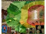 Bild: Die unterschiedlichen Farben symbolisieren die Durchschlagskraft von Fernwaffen. Schutz vor Kugeln kann in Wäldern gefunden werden