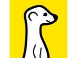 Icon: Meerkat