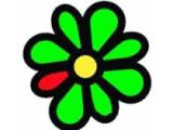 Bild: ICQ Status Checker Logo