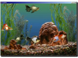 Bild: Aquarium Goldfische Logo