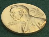 Bild: Nobelpreis-Medaille aus dem Jahr 2010.