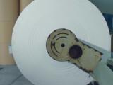 Bild: Apple will das Papier für seine Verpackungen aus nachhaltig bewirtschafteten Wäldern holen.